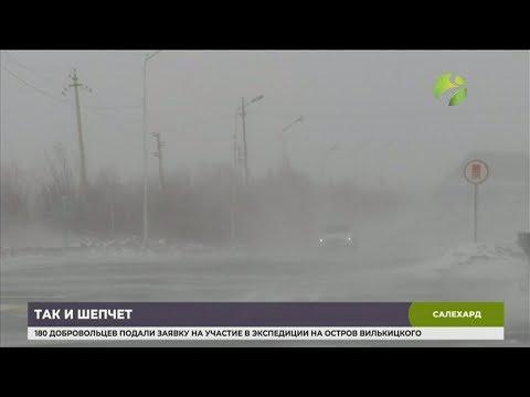 В Салехарде метель и сильный ветер парализовали работу аэропорта и переправы