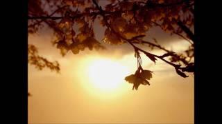 コーラスジャパン - 根の歌
