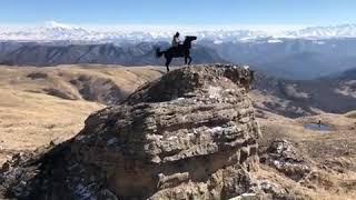 ЛУЧШАЯ ГОРНАЯ ПОРОДА-КАРАЧАЕВСКАЯ. Карачаевская порода лошадей