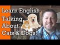 Cats and Dogs! Learn English Words and Phrases to Talk About Pets