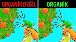 Organik Gıda: Sağlıklı Mı Yoksa Büyük Bir Efsane Mi?