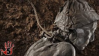 Top 5 Scariest Archaeological Discoveries
