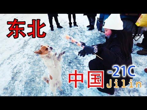 Northern China Jilin Travel Vlog 东北吉林雾凇岛