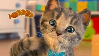 Маленький КОТЕНОК развлекательное видео для детей СИМУЛЯТОР котика как Мой Говорящий Том #ПУРУМЧАТА