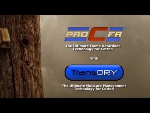 Pro-C + TransDRY