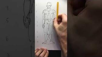 Ihmisen mittasuhteet - Human propotions