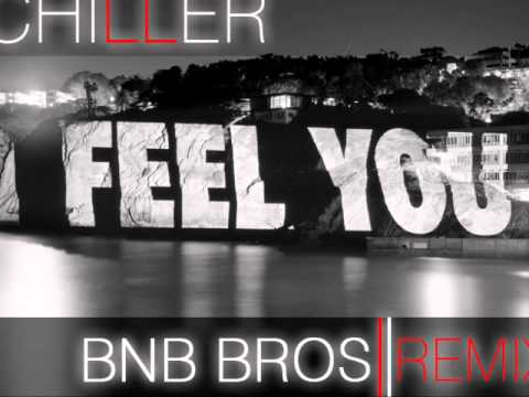Schiller - I Feel You (Bnb Bros 2011 Remix)
