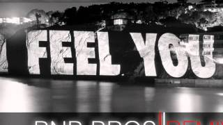 Schiller - I Feel You (Bnb Bros 2011 Remix)