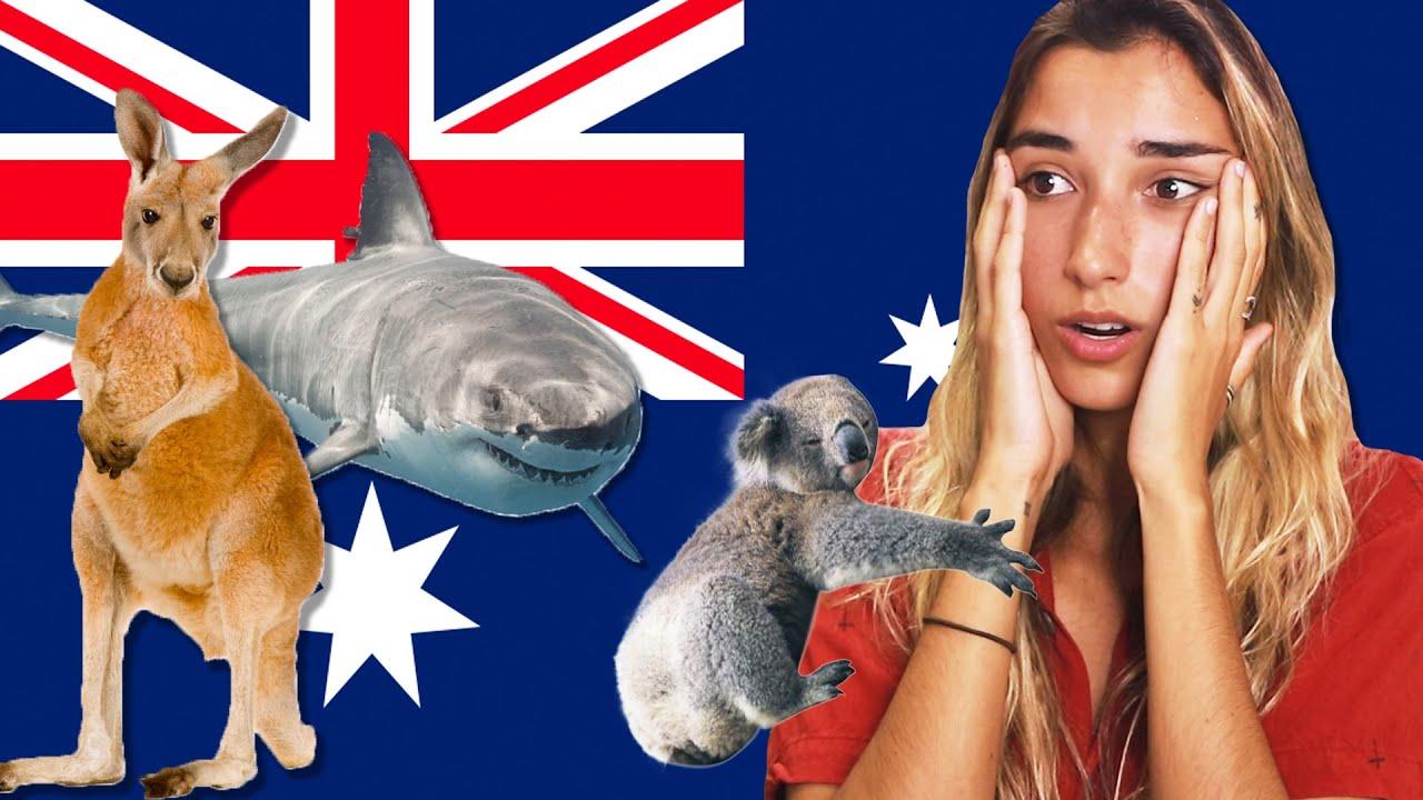 Ranking Dangerous Australian Wildlife (Tier List)