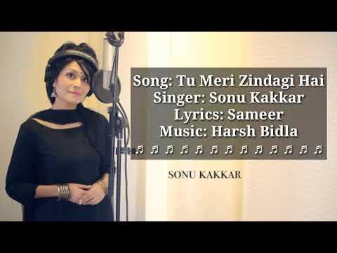 Tu Meri Zindagi Hai Lyrics  Sonu Kakkar  Aashiqui  Sonu kakkar Songs