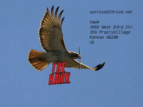 The Hawk - Update on Ramming of USS Fitzgerald