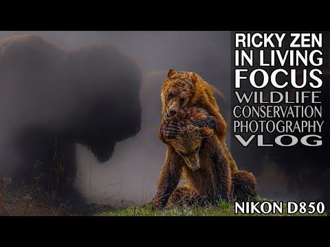Rick Zen's In Living Focus Wildlife Conservation Photography | Videography Journalism Channel