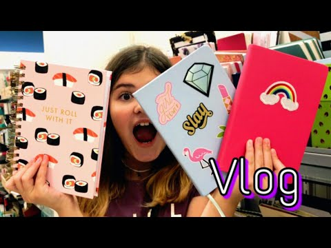 Vlog Америка Шоппинг / Больше блокноты не покупаю 😭 / Dana SYC