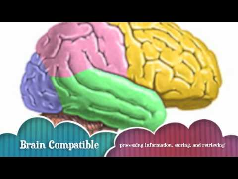 brain compatible learning environments