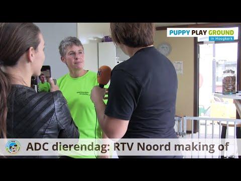 Active Dog Care Dierendag Special 2018, RTV Noord making of