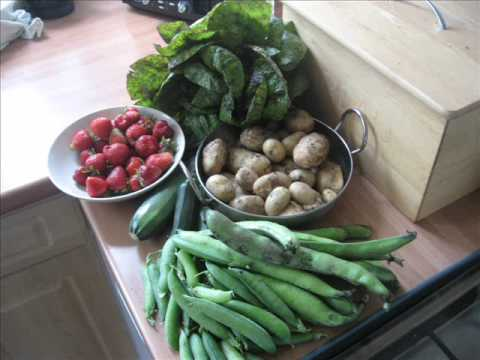 organic-vegetable-growing-in-bolton-(uk)