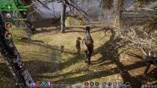 Dragon Age Inquisition (DAI) - NVIDIA GTX 1080 Founders - 1080p Ultra Gameplay Performance Test