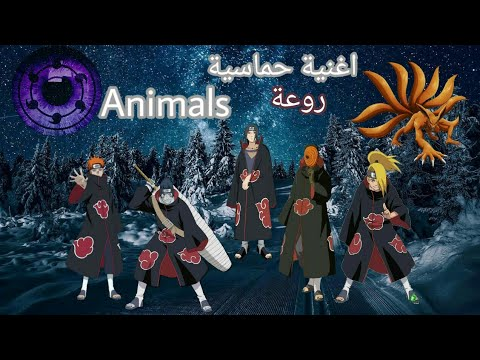 maroon-5-–-animals-[amv]-اغنية-اجنبية-حماسية-🎵رهيبة🎶-مترجمة-🎵