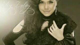 SENSI New Single Elvi Zubay