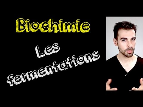 Cours de biochimie: fermentation