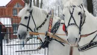 Дед Мороз на тройке лошадей - заказ Деда Мороза(, 2013-09-19T19:23:19.000Z)