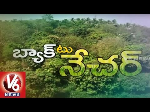 Back To Nature | Crop Cultivation by Using Organic Fertilizers | Chevella - V6 News