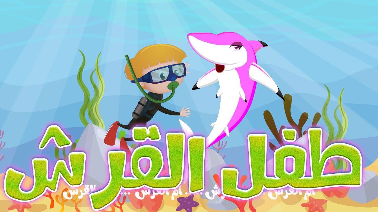 Dana TV   اغنية طفل القرش نسخة جديدة