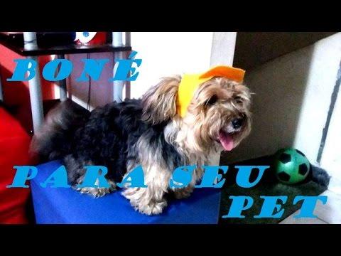 a2af3d951b381 Boné para cachorro sem costura(faça você mesma) - YouTube