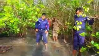 সাতক্ষিরা পুলিশ সুপারের দুর্ধর্ষ গহিন সুন্দরবনে অভিযান দেখুন || BD Police News Update