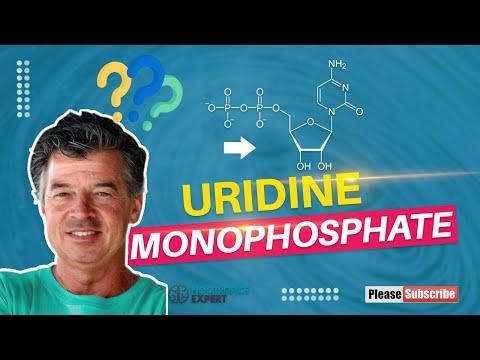 uridine-monophosphate
