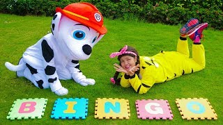 Bingo Dog Song Nursery Rhymes for Kids