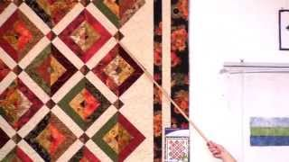 Double Vision - Strip Presentation By Cozy Quilt Designs