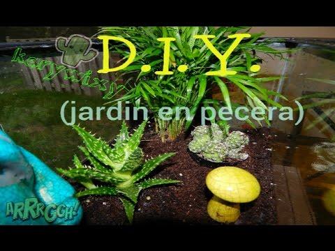D I Y Jard N En Una Pecera Reciclemos Youtube