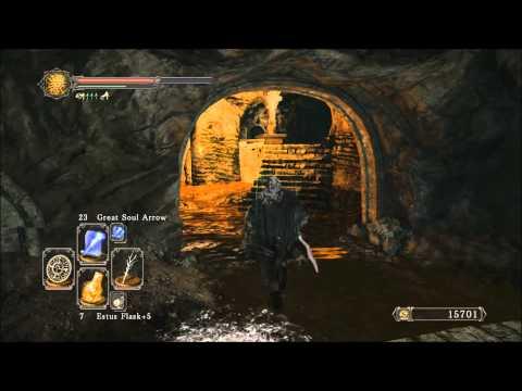 Dark Souls 2 - Whisper of Despair and Warmth Location