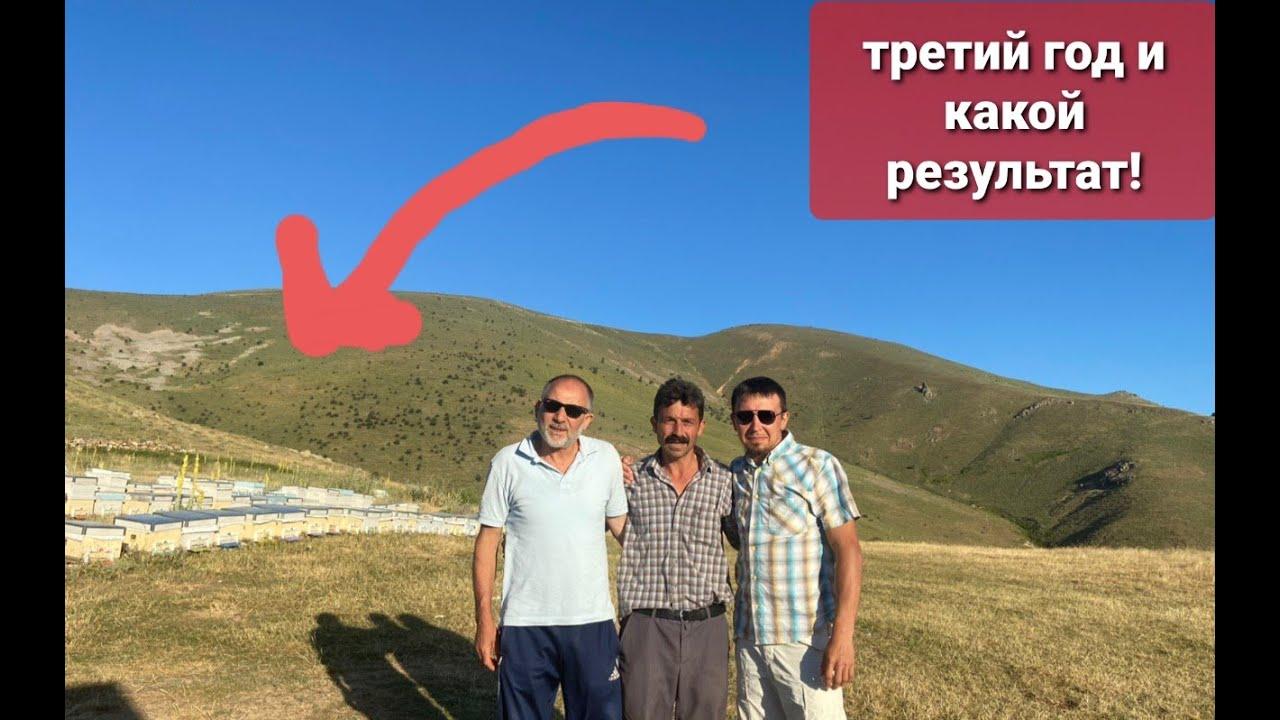 Пчеловодство в турецких горах   центральная Турция Анадолу