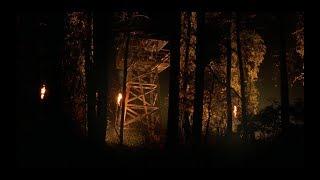 """Кинофрейм: """"Таинственный лес"""""""