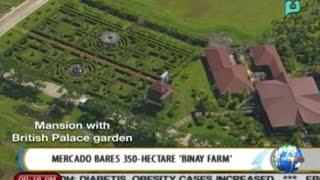 NewsLife: Mercado bares 350-hectare