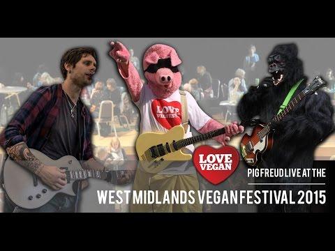 Pig Freud live at the West Midlands Vegan Festival 2015