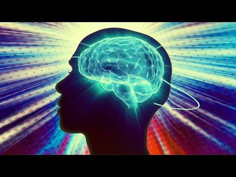 Мифы и заблуждения о мозге (рассказывает Ольга Сварник)