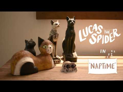 Lucas the Spider - Naptime video screenshot