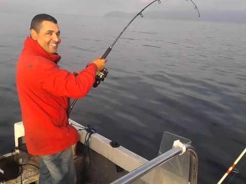 sache peche poisson