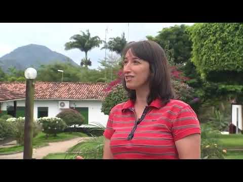 Rede Bahia 2/2 | Escola rural no município de Tancredo Neves inova em método de ensino