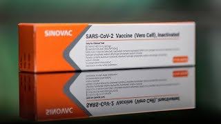 Chile approves Sinovac's vaccine