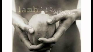 Lamb - Angelica