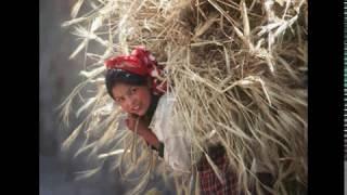 أغنية أمازيغية قديمة لعشاق الفن الأصيل