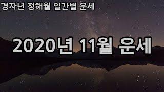 정해월 11월 일간별 운세