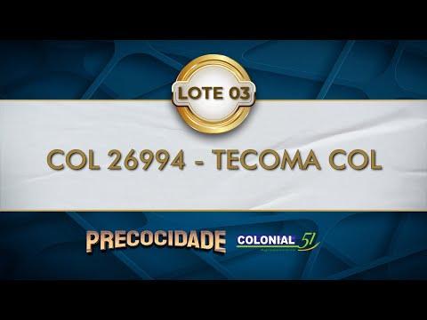 LOTE 03   COL 26994