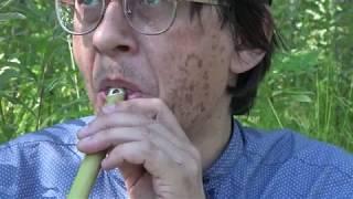Обертонная травяная дудка / Russian ovrtone flute