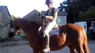 explication pour monter a cheval