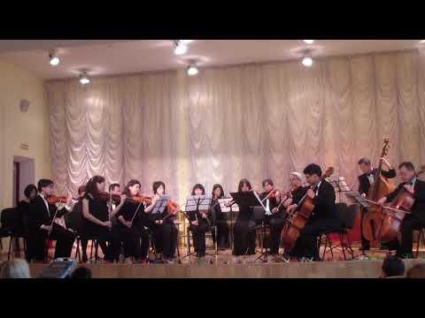 Струнный оркестр из Токио исполняет Чебурашку